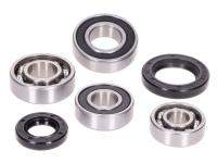 gearbox bearing set w/ oil seals for Peugeot horizontal