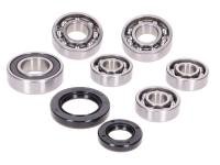 gearbox bearing set w/ oil seals for Kymco horizontal 4-stroke