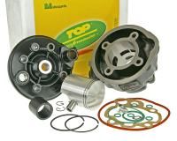 cylinder kit Top Performances Trophy 70cc for Minarelli AM